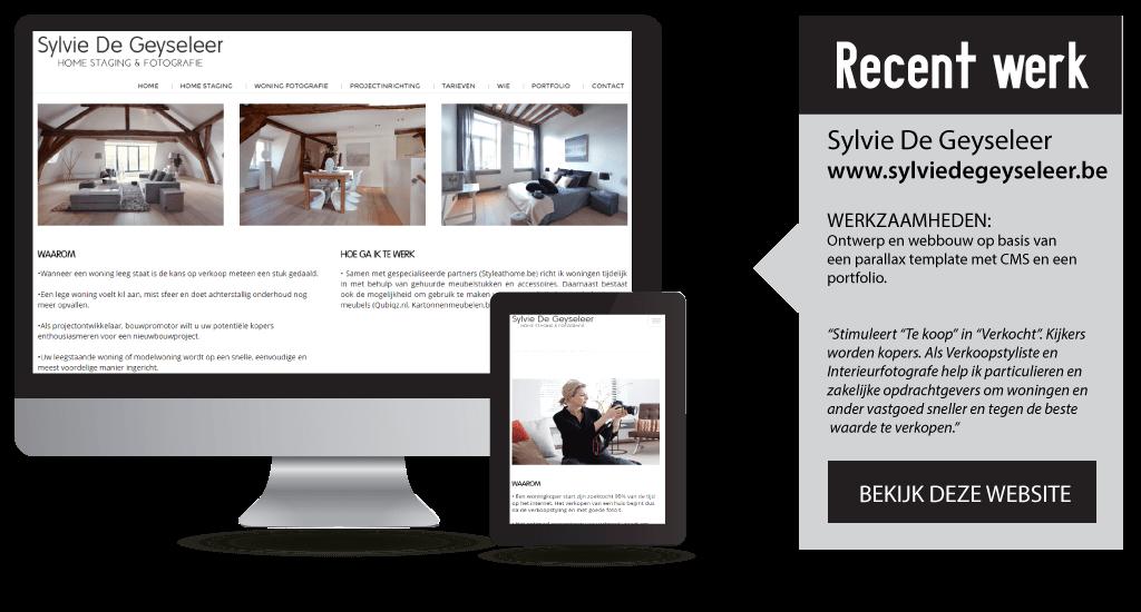2.portfolio-websites-sylvie-de-geyseleer
